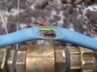 кабель от насоса